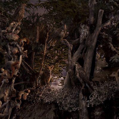 Romain Linnheardt - NightVision#2